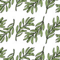 Olive Branch Seamless Pattern. White Background. Vector Illustration Royalty Free Stock Photos - 68560858