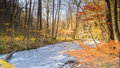 Mysterious Oirase Stream Flowing Through The Autumn Forest In To Stock Photo - 68576770
