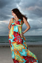 Woman On The Beach In A Dress Royalty Free Stock Photos - 6868478