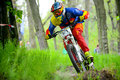 Professional DH Biker Is Riding A Mountain Bike On The Trail Of Khortytsya Island During The Iron Bridge Competition, A Stage Of D Stock Photo - 68631480