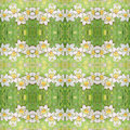 Seamless Pattern With Ornate Narcissus Flower Or Daffodil On The Green Background. Royalty Free Stock Photos - 68667658