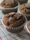 Chocolate Chip Muffins On A Cooling Rack Stock Photo - 6878670