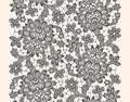 Black Vector Lace Royalty Free Stock Photo - 68724445