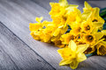 Bunch Of Yellow Daffodils With Blossom Royalty Free Stock Images - 68845189
