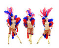 Attractive Cabaret Trio Royalty Free Stock Images - 6892219