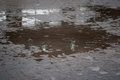 Sidewalk With Puddles Stock Photo - 68901920