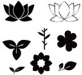 Flowers Shape Black Silhouette Set  Illustrations  On W Stock Photo - 68986850