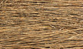 Natural Dry Reed Background Stock Images - 69003594