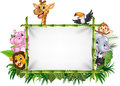 Cartoon Funny African Animals With Blank Sign Royalty Free Stock Images - 69072399