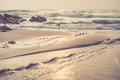 Vintage Beach With A Creek And A Heron Royalty Free Stock Images - 69207199