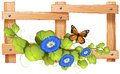 Fence Design With Plant And Butterfly Royalty Free Stock Photo - 69270055