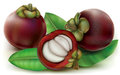 Mangosteen Royalty Free Stock Images - 69309029