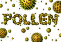 Pollen Royalty Free Stock Photography - 69343427