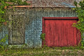 Overgrown Shed With Red Wooden Door Royalty Free Stock Photo - 69367695