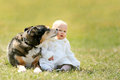 Sweet Baby Girl Getting Kiss From Pet German Shepherd Dog Outside Stock Photo - 69369730