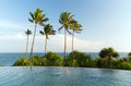 View From Infinity Edge Pool To Ocean And Palms Royalty Free Stock Photography - 69409677