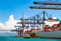 Sea Port And Cranes In The Cargo Royalty Free Stock Image - 69436176