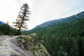 Oregon Rock Outcropping In Forest Stock Image - 69441131