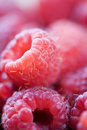 Fresh Raspberries Royalty Free Stock Images - 6952199