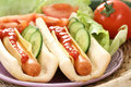 Hot Dogs Stock Photography - 6959772