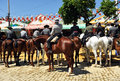 Riders At Horse In The Seville Fair, Feast In Spain Royalty Free Stock Image - 69584226