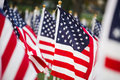 American Flags Stock Photo - 6965150