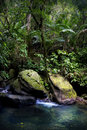 El Yunque Rainforest Stream Pool Royalty Free Stock Images - 69615009