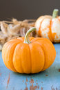 Two Pumpkins Royalty Free Stock Photos - 6978278