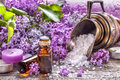 Essential Oils And Bath Salt Royalty Free Stock Photo - 69704345