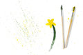 Two Used Paint Brushes And Drawing Gouache Flower On A White Background Royalty Free Stock Photos - 69847118