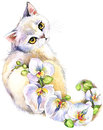 Cat. Watercolor Cat. Flower Watercolor Background. Stock Photo - 69880950
