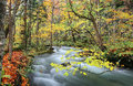 Mysterious Oirase Stream In The Autumn Forest Stock Photo - 69903680