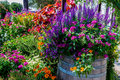 A Variety Of Garden Flowers Stock Photography - 69999422