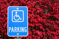 Handicap Parking Sign Royalty Free Stock Photo - 7008165
