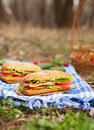Ciabatta Bread Sandwich Lifestyle Picnic Meal With Bacon Royalty Free Stock Photo - 70077985