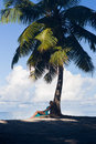 Tropical Beach, Palm Tree With Sitting Blonde Woman Royalty Free Stock Photography - 70120357