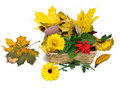 Autumn Basket Royalty Free Stock Image - 7025576