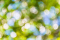 Bright Green And White Blur Bokeh Abstract Light Spring Forest B Stock Photos - 70227603