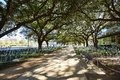Houston Discovery Green Park In Downtown Stock Photo - 70330080