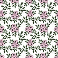 Floral Abstract  Seamless Pattern,white Background Royalty Free Stock Photos - 70391528