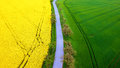 Rape And Grain Field From Aerial View Stock Photo - 70441410