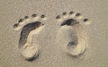 Baby Footprints On The Beach Stock Photography - 70460922