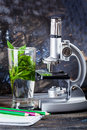 Children S Microscope In Still Life Table Leaves, Plant, Foliage, Biology, Pencils, Notebook Royalty Free Stock Image - 70463046