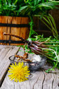 Roots Of Dandelion Flower Stock Photography - 70478092