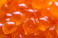 Red Caviar Royalty Free Stock Photography - 70516387
