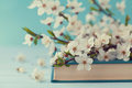 Cherry Blossoms And Old Book On Turquoise Background, Beautiful Spring Flower, Vintage Card Stock Photos - 70537323