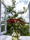 View From Open Window Royalty Free Stock Images - 70573419
