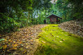 Cabin In The Woods Stock Photos - 70582083