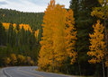 Scenic Autumn Drive To Mount Evans In Colorado Royalty Free Stock Photos - 70609128