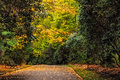 Empty Footpath In Fall. Stock Photography - 70651452